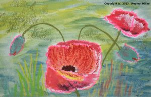 Poppy in Oil Pastel