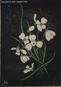 lgch-lily-of-the-valley